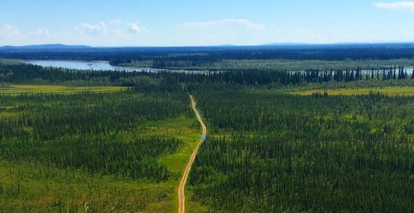ITOC: Boreal Forest Stories
